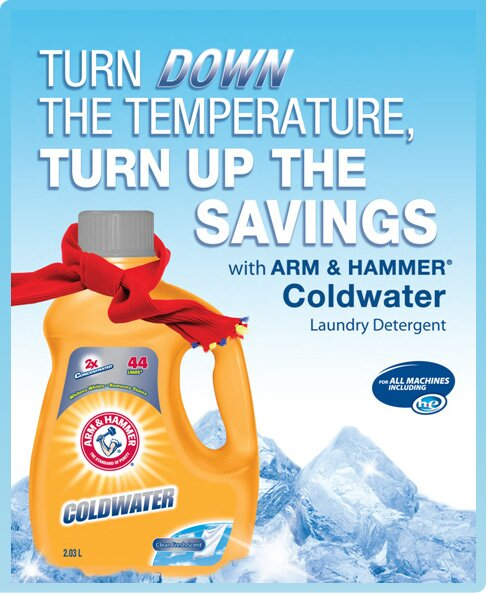 **NEW** Buy one Get one Free Arm & Hammer Coupon!