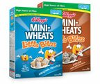 Kellogg's Portal on websaver