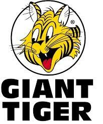 Giant Tiger Boxing week Flyer