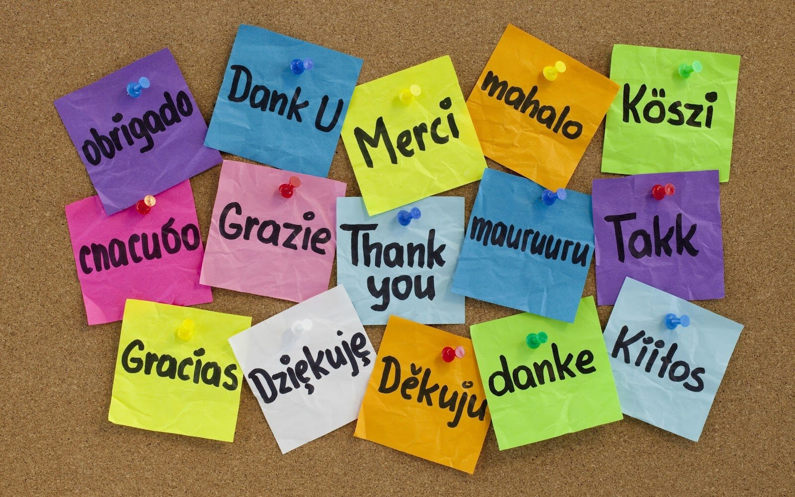 The importance of a THANK YOU goes a long way!